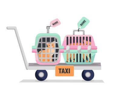 pet taxi. Elements of personal travel cage with dog's or cat's bag .