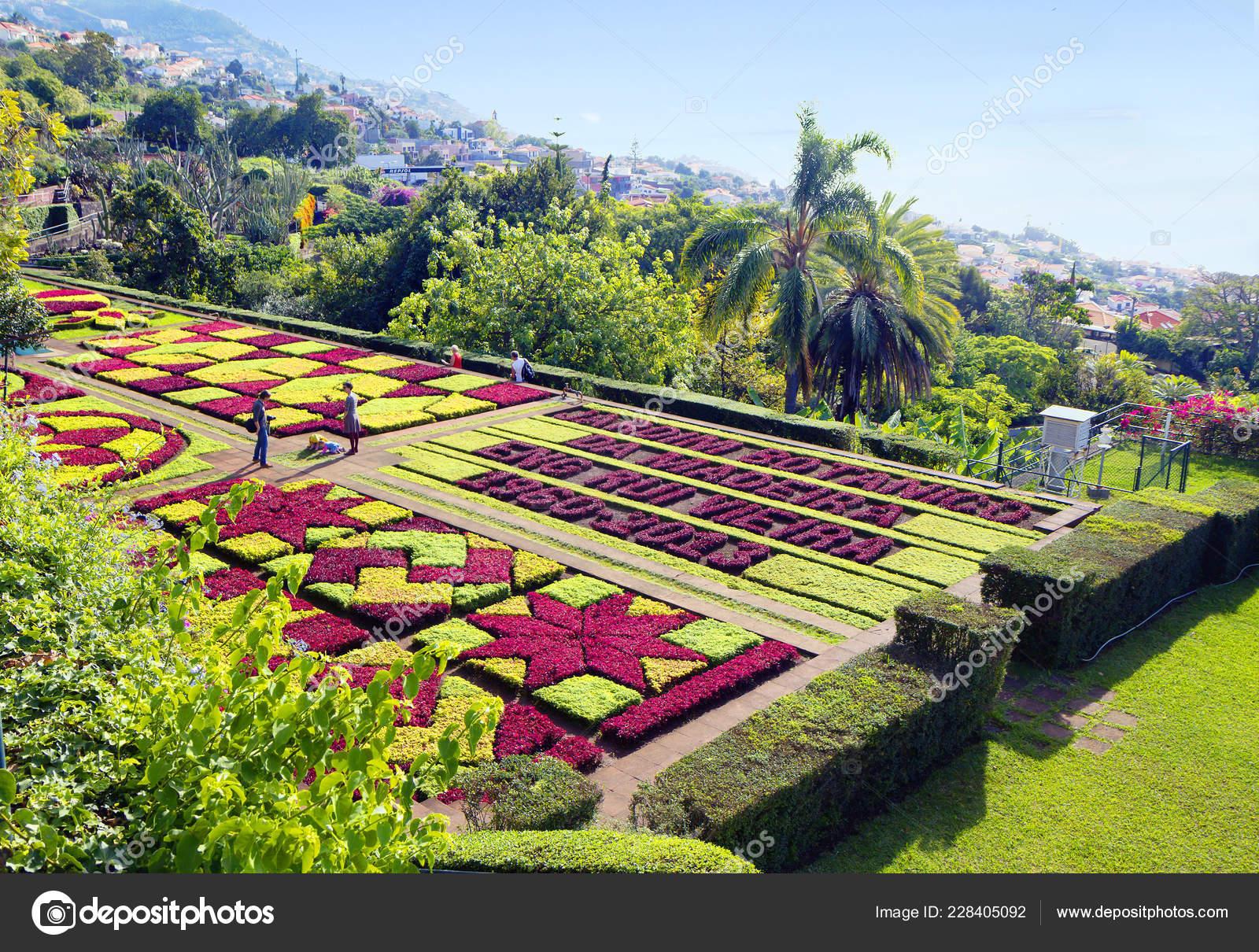 Funchal Madeira Portugal 2013 Botanischer Garten Madeira Botanische