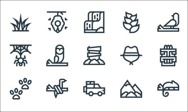 Jungle line icons. linear set. quality vector line set such as chameleon, footprint, mountains, snake, spider, sun hat, hel, beehive icon