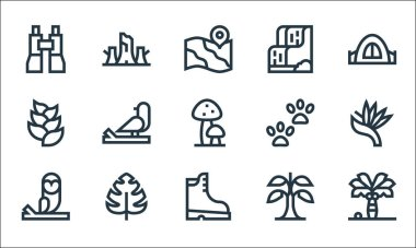 Jungle line icons. linear set. quality vector line set such as palm tree, boots, owl, banana, monstera leaf, hel, footprint, waterfall, trunk icon