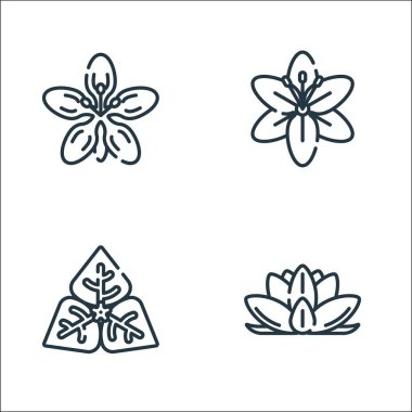 Flowers line icons. linear set. quality vector line set such as flower, flower, flower icon