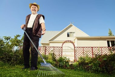 Raking in the garden. Happy senior man gardening in retirement.