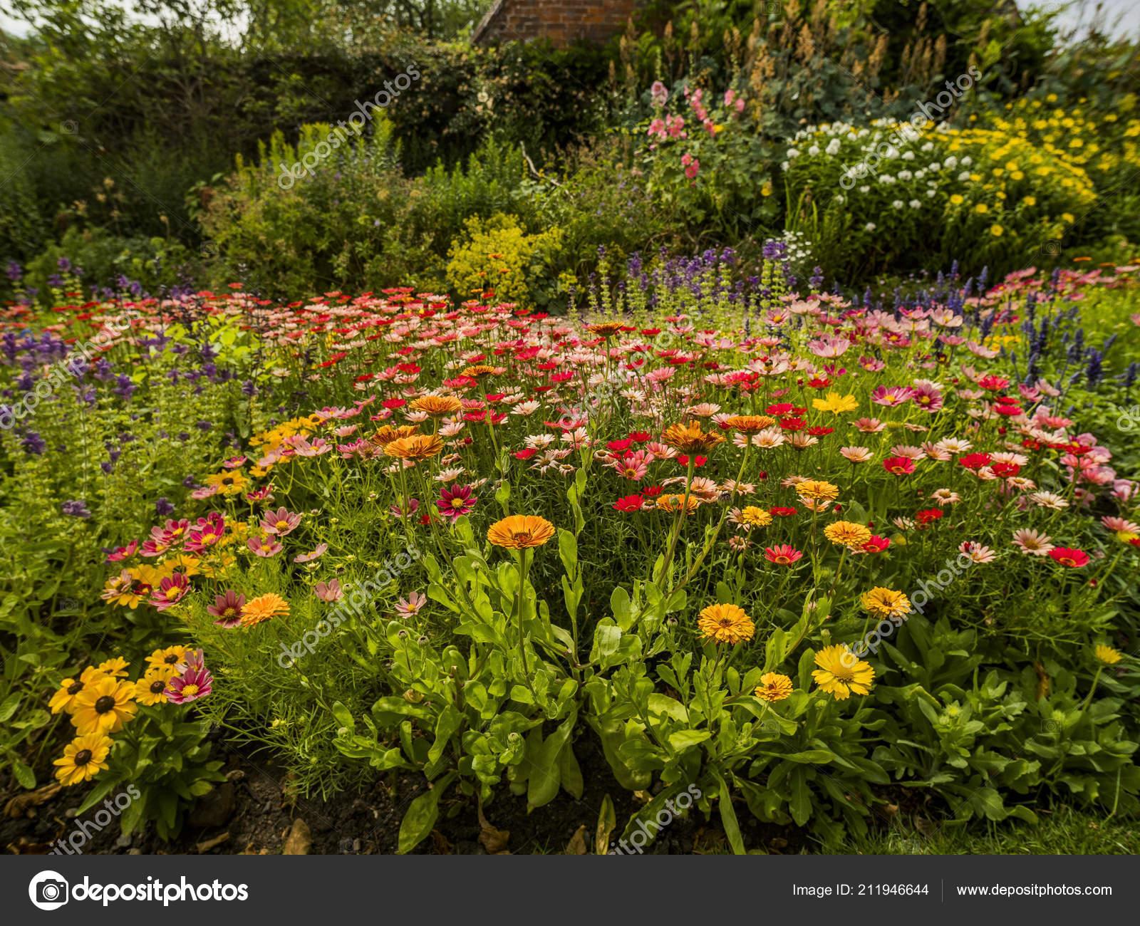 Giardino del cottage campagna inglese con fiori casa for Giardino con fiori