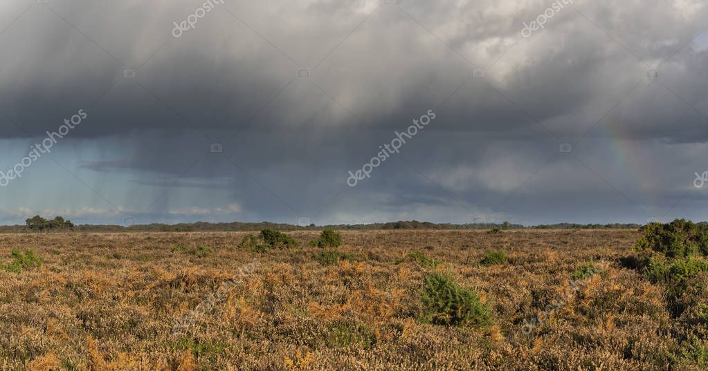 Rain and storm with rainbow  in New Forest with   heathland in  autumn, England.