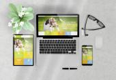 responsive design pet website auf geräten top view hölzerne desktop 3d rendering