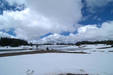 Summer Snow on the Grand Mesa in Colorado