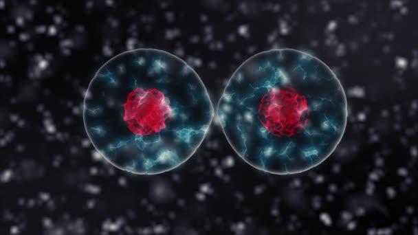 Divisione Cellulare Sfondo Nero Versione In 4k Concetto Di Medicina