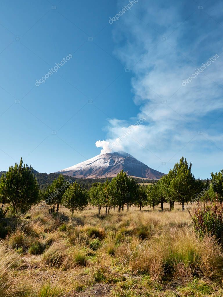 Smoke comes out from the Popocatepetl volcano seen from Itza-Popo National Park, Mexico