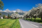 Vysoké Tatry během jara na Slovensku
