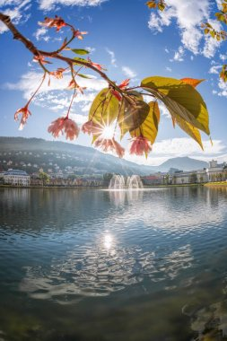 Springtime in Bergen, Norway