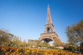 Eiffelova věž s jarní stromy v Paříž, Francie