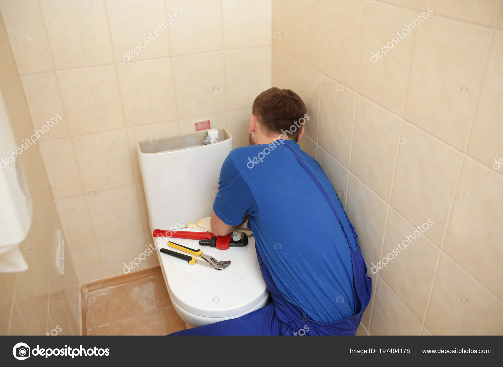 Image result for professional plumber toilet