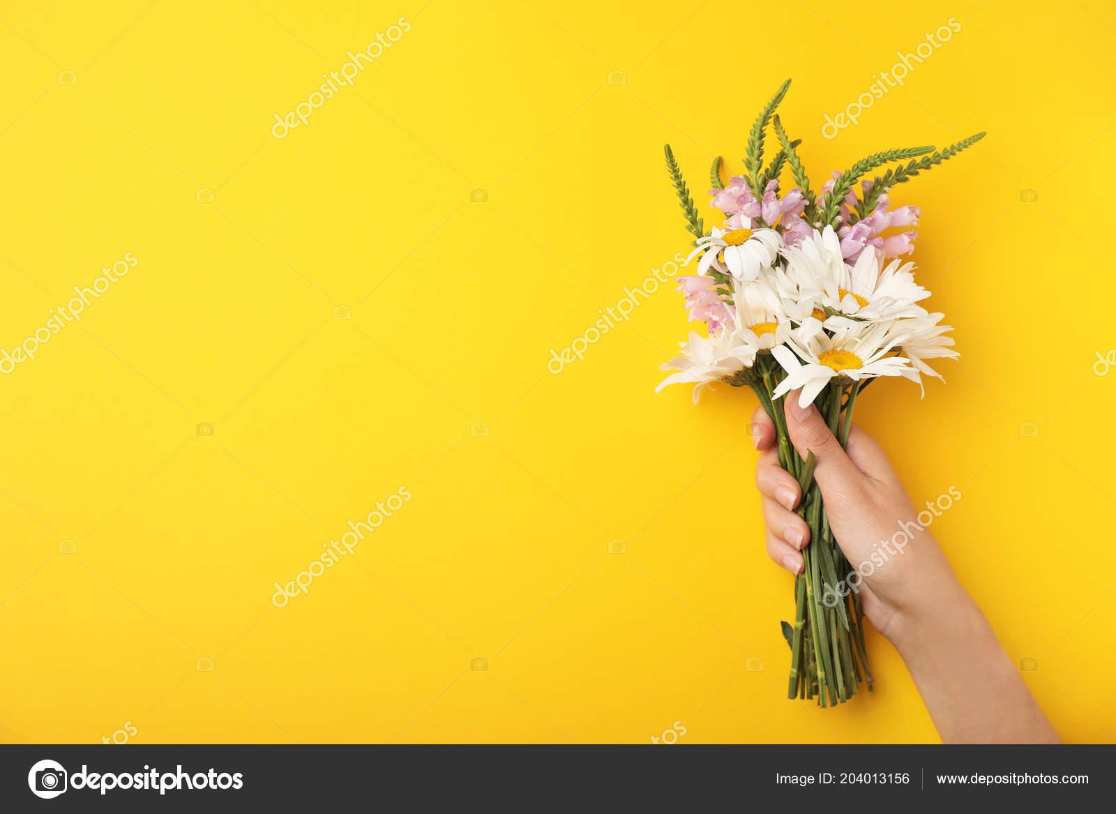 Woman Wild Flowers Color Background Top View U2014 Fotografia De Stock