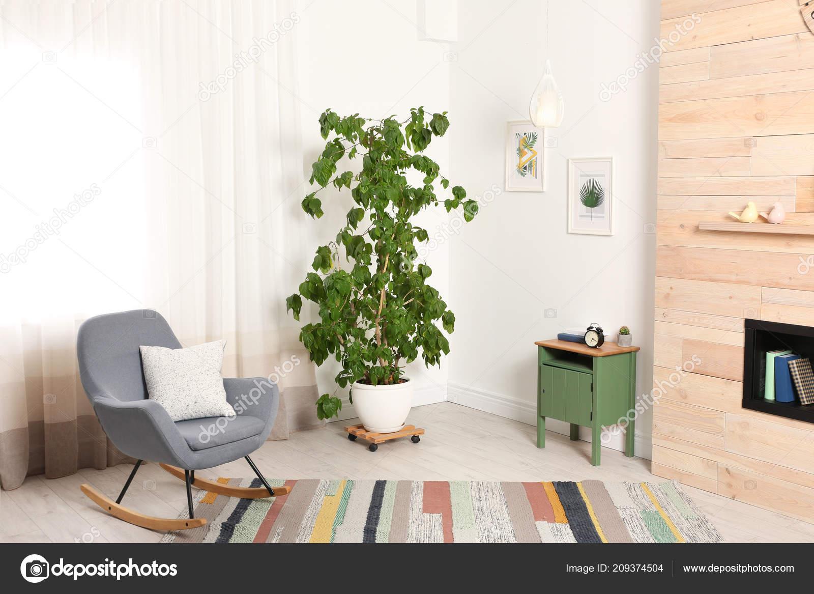 Stijlvolle kamer interieur met grote kamerplant schommelstoel