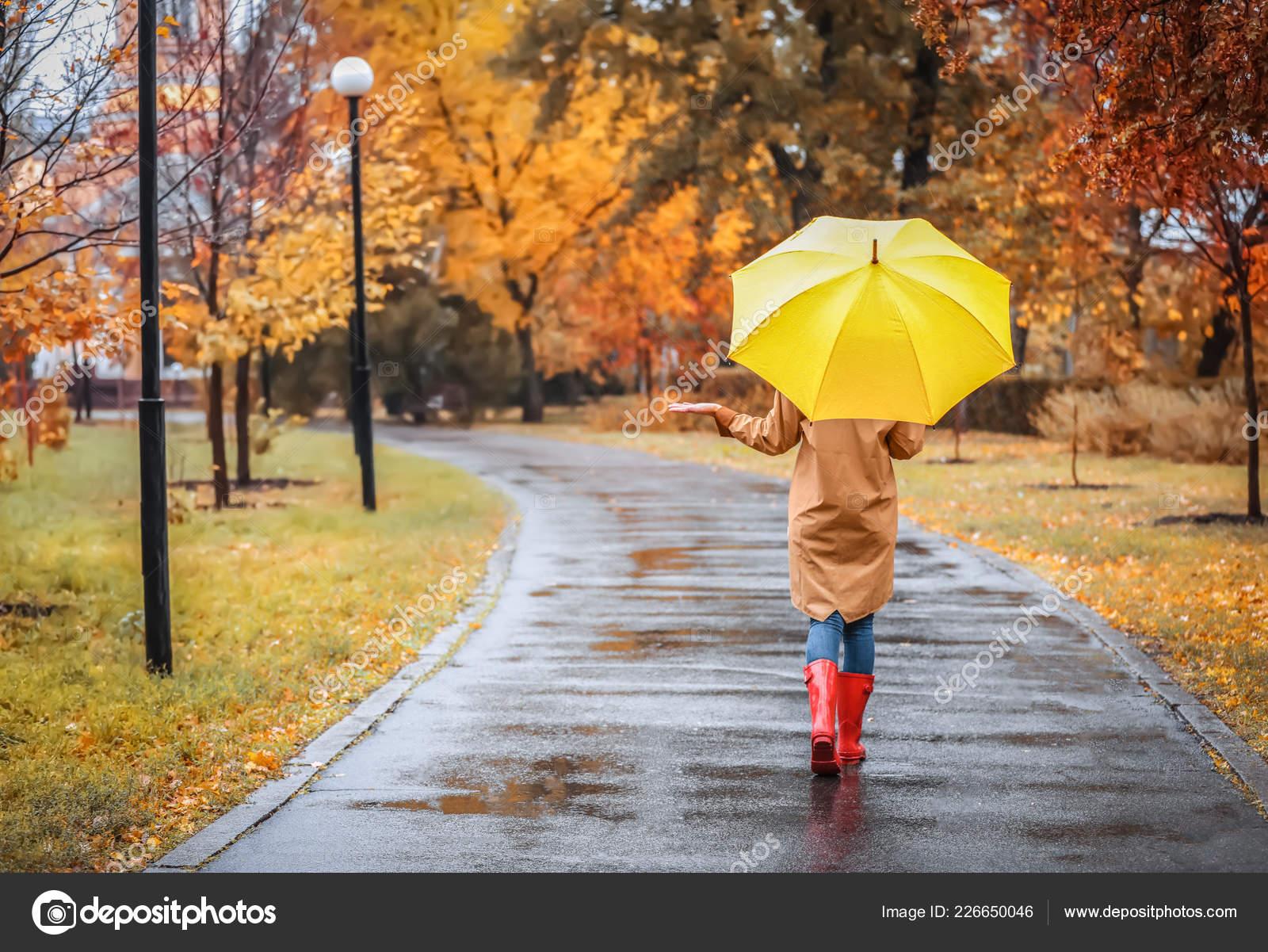 Resultado de imagem para Passear a chuva com umbrella