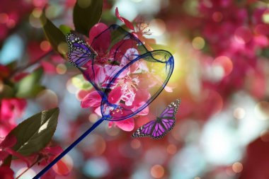 Bright net and beautiful butterflies on blossoming tree outdoors