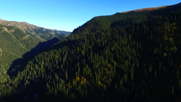 Aerial Mountain Range With Forests