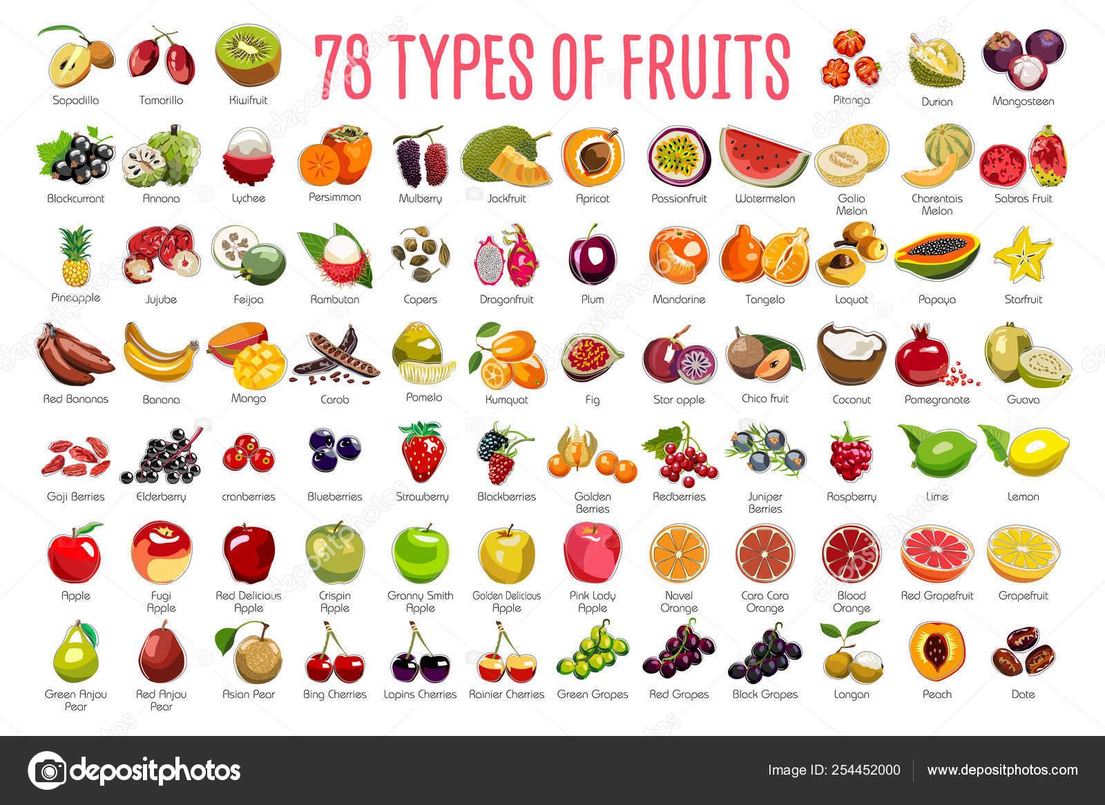 Frutas Iconos Gran Incluye Tipos Frutas Coloridas Con Nombres Los