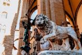 krásná socha lva v slavné Loggia dei Lanzi ve Florencii, Itálie