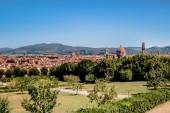 Fotografia verde degli alberi, cespugli e splendidi palazzi antichi a Firenze, Italia