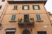 Fotografie 1 Balkon mit Pflanzen am alten Haus mit Fenstern, Pisa, Italien