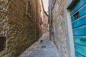 városi táj keskeny Tuscany város utca és a macska
