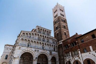 Roman Catholic basilica (San Michele in Foro) in Pisa, Italy stock vector