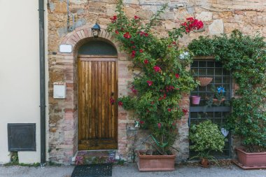 urban scene with building with wooden door and green plants with flowers on it, Tuscany, Italy
