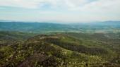 Letecký pohled na krásné zelené kopce se stromy v provincii arezzo, Itálie