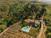 aerial view of villa with swimming pool near forest in Italy