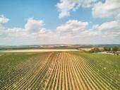 Letecký pohled na zemědělských polí a obloha s mraky, Česká republika