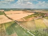 Photo farmland