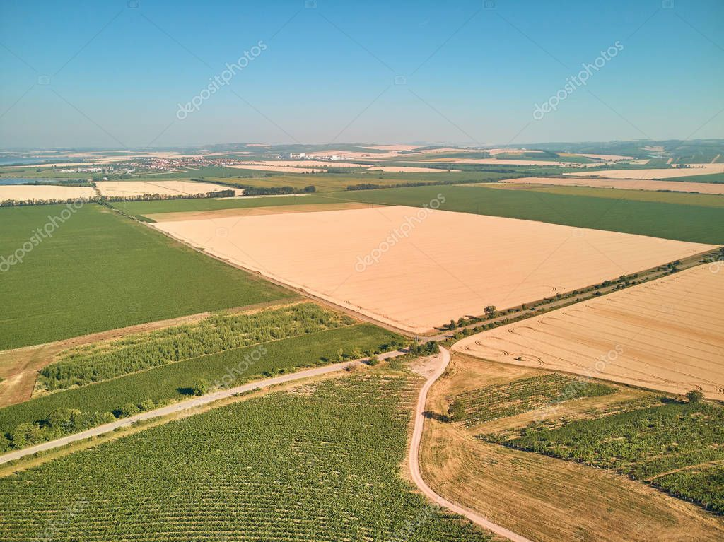 Aerial view of green fields and blue sky, Czech Republic