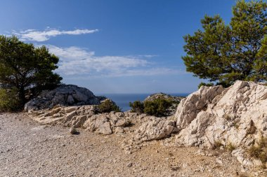 rocks, green trees and scenic sea view in Calanques de Marseille (Massif des Calanques), provence, france