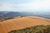 Letecký pohled na oranžové pole sklizně a silnice v Bad Schandau, Německo