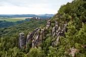 Fotografie schöne Landschaft mit alten Felsen und Wald im Bastei, Deutschland