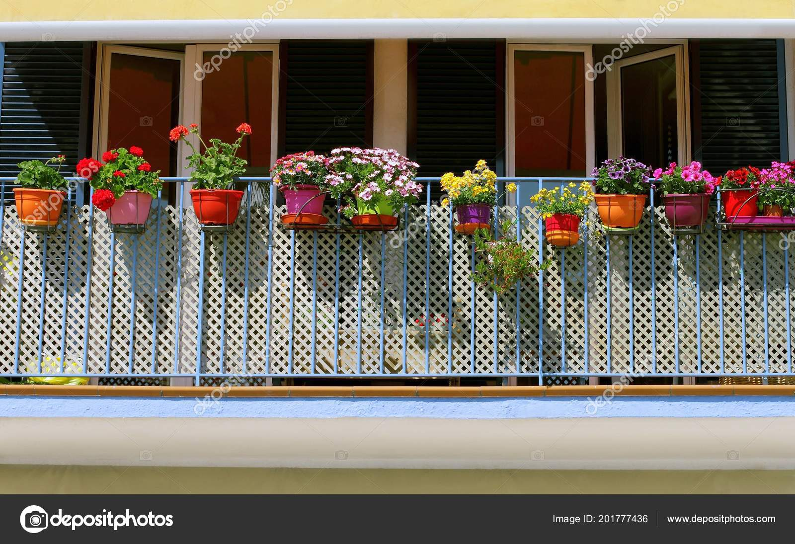Potted Spring Flowers Sunny Balcony City Stock Photo C Boaphotostudio 201777436