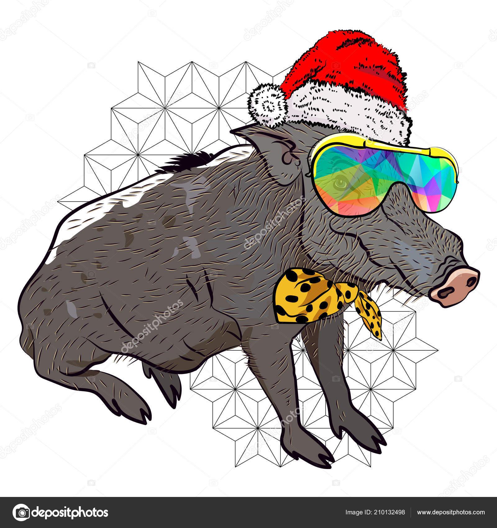 Coole Weihnachten Plakat Wildschwein Silvester Anzug Plakat Für Die