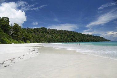 One of the 10 best beaches in Asia, located at 2 hour journey by cruise from Port Blair and further by road, one of he most iconic clean and clear seascape to watch and enjoy sea swimming.