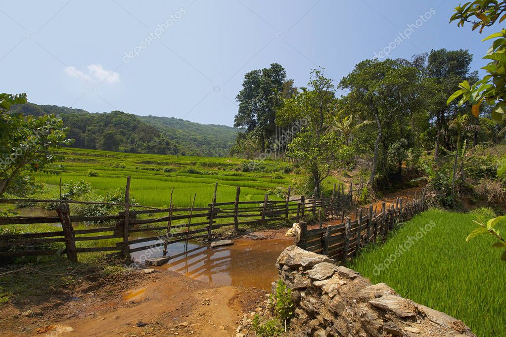 Mhayre village, Dandeli Anshi Tiger Reserve, Karnataka, India.