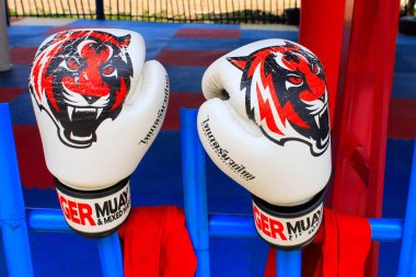 White boxing gloves with tiger print at the gym of Ban Bung Sam Phan Nok, Phetchabun, Thailand
