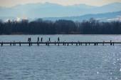 Fotografie Menschen an der Uferpromenade auf Seenlandbergen