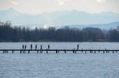 Fotografie Wandern auf der Uferpromenade in der Seenlandschaft