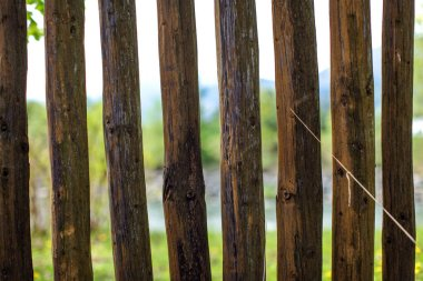 Close up photo - old wooden fence posts poles, with blurred spring country and river in background.