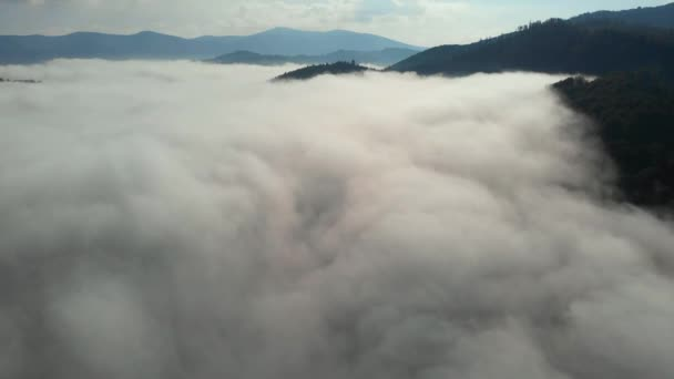 Aerial drone shot of amazing dense fog above river between mountains. Morning summer time. Sunny weather. 4K