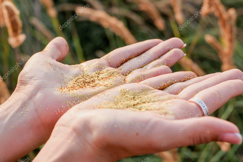 Posing female hands in golden glitter in the field background