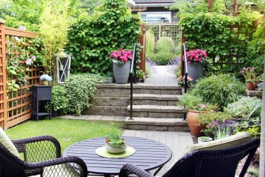 Small summertime townhouse garden, with blooming perennial lavender and begonia flowers.