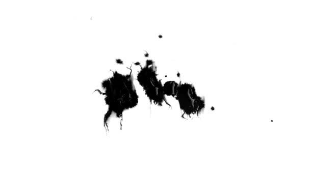 Černé a bílé efekt s kapkou inkoustu Hd