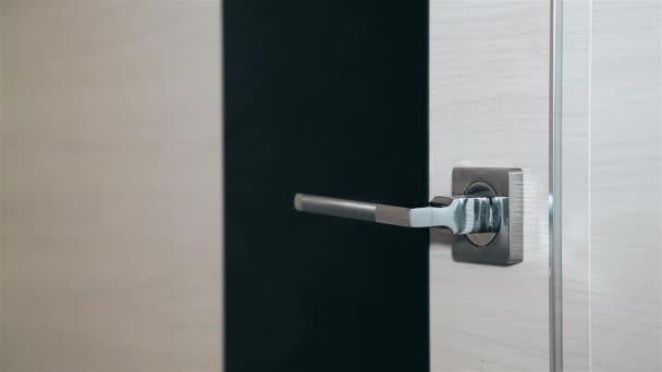 Otevírací ocelové dveře s kovovou rukojetí Hd 1920