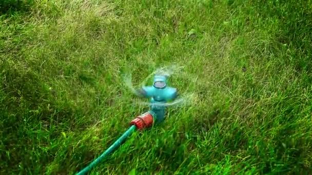 Zahradní rozprašovač pro vodu HD 1920x1080